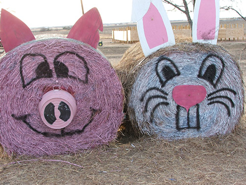Pig and Rabbit Hay Bale